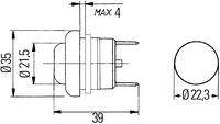 n295.tif